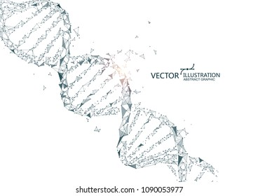 DNA abstract graphics, and the things of points and lines, vector background.