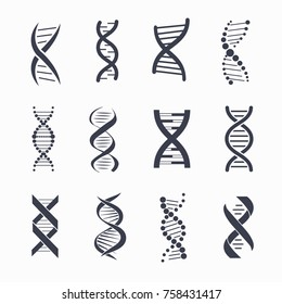 Dna different icons set, a molecule that carries the genetic instructions represented on vector illustration isolated on white background