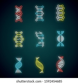 DNA double helix neon light icons set. Deoxyribonucleic, nucleic acid structure. Chromosome. Molecular biology. Genetic code. Genome. Genetics. Medicine. Glowing signs. Vector isolated illustrations