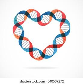 DNA, genetic icon - heart