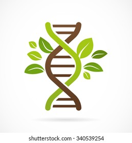 DNA, genetic icon - tree with green leaves