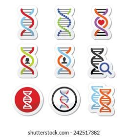 DNA, genetics vector icons set