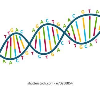 DNA scheme