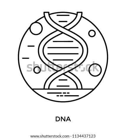 Dna Strand Design Icon Genetics Concept Stock Vector Royalty Free