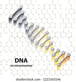 DNA structure double helix on white background. Nucleotide, Phosphate, Sugar, and bases. education vector info graphic.Adenine, Thymine, Guanine, Cytosine.