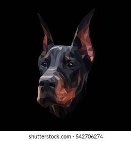 Doberman dog animal low poly design. Triangle vector illustration.