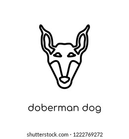 Doberman dog icon. Trendy modern flat linear vector Doberman dog icon on white background from thin line dogs collection, editable outline stroke vector illustration