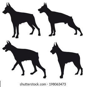 Doberman four different black silhouettes