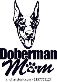 Doberman Pedigree Dog Breed Isolated Pet Puppy Face
