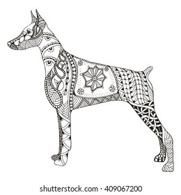 Doberman pinscher zentangle stylized, vector, illustration, freehand pencil, hand drawn, pattern. Zen art. Ornate vector. Lace. Dog chinese zodiac sign.