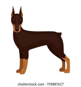 Doberman, single icon in cartoon style.Doberman, bitmap,raster symbol stock illustration web.