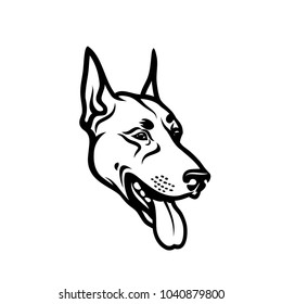 Dobermann dog face - isolated outlined vector illustration