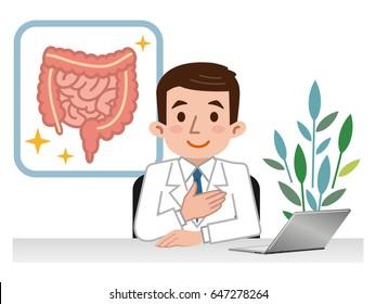 Doctor explaining the large intestine and small intestine