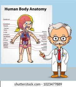 Doctor and human body anatomy