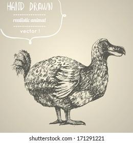 Dodo or Raphus cucullatus. Hand drawn vector illustration.