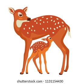 doe is nursing a fawn. Sika deer with offspring. vector illustration