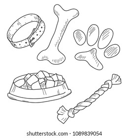 Dog accessories vector sketch
