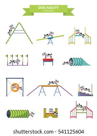 Dog agility. Funny dog with different agility equipment. Concept for dog training center. A-frame, teeter, dogwalk, tunnel, pause table, slalom, long jump, hurdle, tire jump.