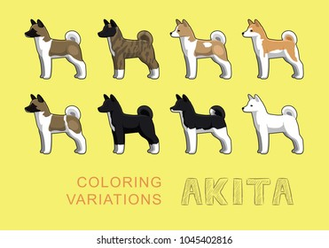 Dog Akita Coloring Variations Vector Illustration