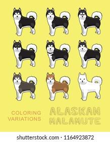 Dog Alaskan Malamute Coloring Variations Vector Illustration