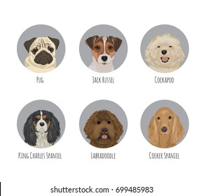 Dog animal pet round circle portrait badge stickers. Various dog breeds and kind, friendly cute jack russel terrier, pug, spaniel, labradoodle, cockapoo