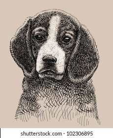 Dog artistic drawing. animal character with combination line ink sketch