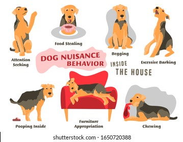 Dog behavior problem icon set. Domestic animal or pet language. Airedale terrier training. Puppy in a house. Simple icon, symbol, sign. Editable vector illustration isolated on white background