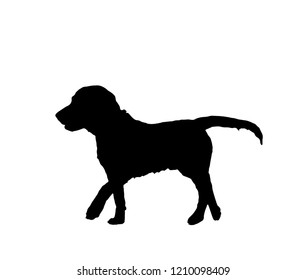 Dog black silhouette isolated on white background. Simple lovely domestic animal profile. Graphic design for zoo pet shop, puppy hound character icon, vector illustration, eps 10