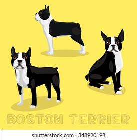 Dog Boston Terrier Cartoon Vector Illustration