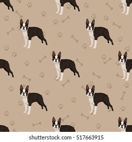 Dog boston terrier seamless pattern colorful with foot prints and bones
