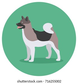 Dog Breed Akita Inu. Design Label Vector Illustration