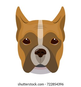 A dog, a breed of boxer.Muzzle of a boxer single icon in cartoon style vector symbol stock illustration web.