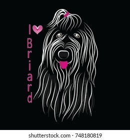 Dog breed Briard sketch vector graphics monochrome black and white with bow 2017