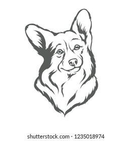 Dog breed Corgi in black and white