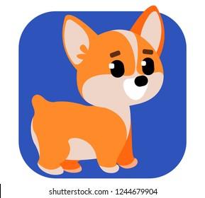 Dog breed corgi. Cartoon style.