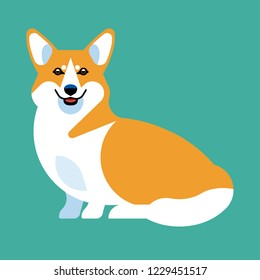 The dog breed Corgi is sitting. Stylish vector image of an animal in a sitting pose, in full growth.