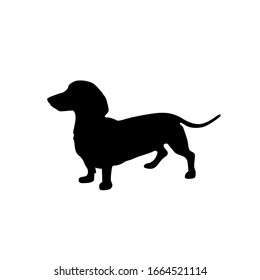 dog breed Dachshund icon silhouette long short small standing