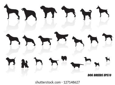dog breed icons