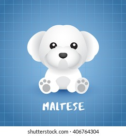Dog Breed : Maltese : Vector Illustration