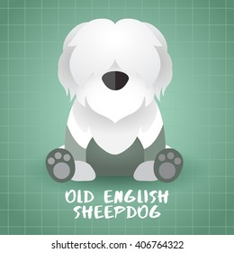 Dog Breed : Old English Sheepdog : Vector Illustration