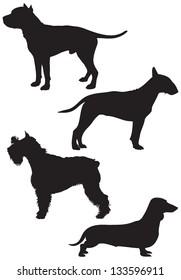 Dog breed vector Silhouettes, Bull Terrier, Schnauzer, Dachshund, Staffordshire Terrier, Stafford, Staffy or Staff, American Pit Bull Terrier