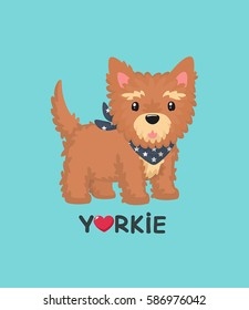 Dog breed Yorkshire Terrier. Yorkie Puppy in a blue scarf with the stars wearing around his neck. Text: Love Yorkie