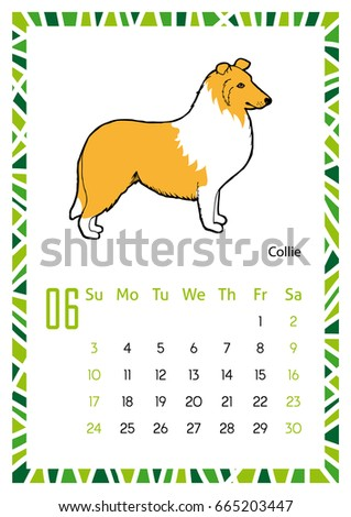 Dog Breeds Calendar Collie June Page Stock Vector (Royalty