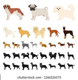 Dog breeds cartoon, black icons in set collection for design.Dog pet vector symbol stock web illustration.