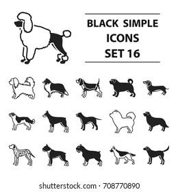 Dog breeds set icons in black style. Big collection dog breeds vector symbol stock illustration