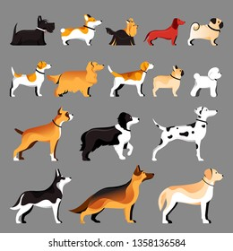 Dog breeds set. Vector flat illustration. Pets icons collection.