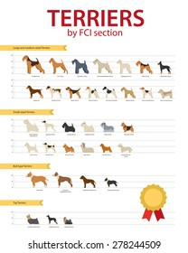 Dog breeds Terriers by FCO section