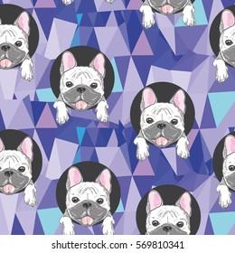 dog bulldog, bulldog vector illustration