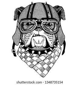 Dog, bulldog wearing a motorcycle, aero helmet. Hand drawn image for tattoo, t-shirt, emblem, badge, logo, patch.