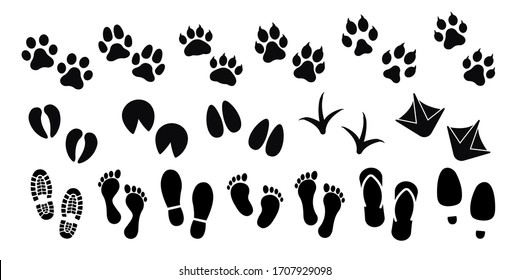 Dog ,cat and human paw print vector icon